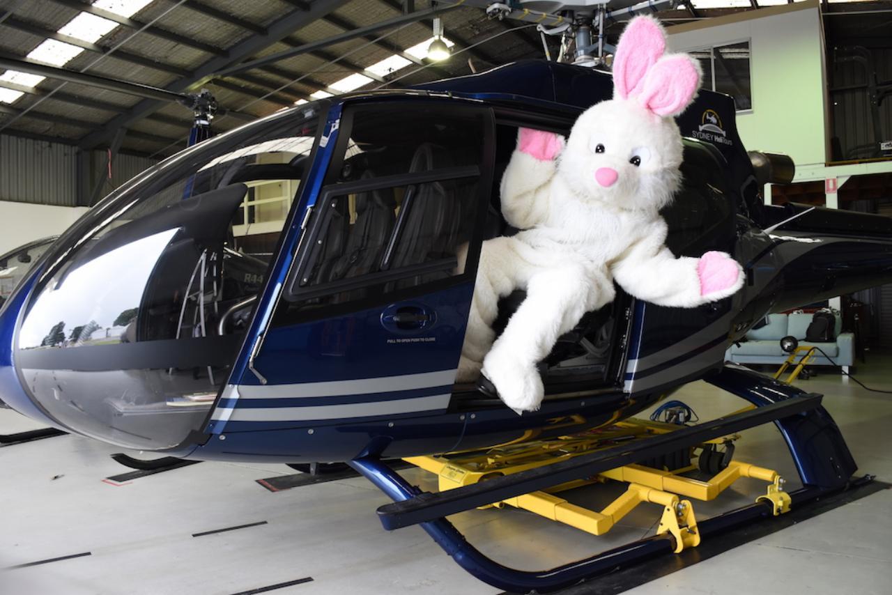 Glenworth Valley easter bunny