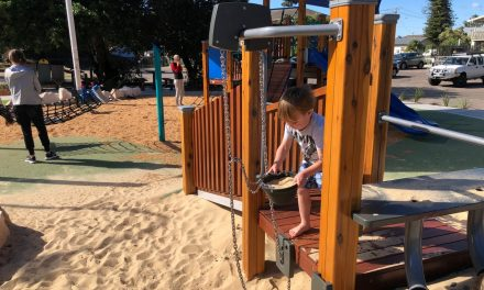 New Playground at Heazlett Park, Avoca