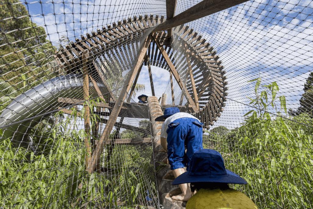 The Ian Potter Wild Play Garden at Centennial Parklands. Image ©Centennial Parklands.