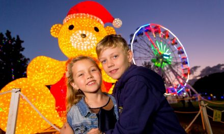 Bushfire Appeal at Christmas Lights Spectacular this weekend