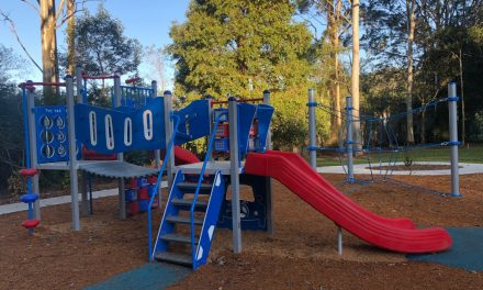 There's a New Playground at Condula Park (Perratt Close Reserve), Lisarow