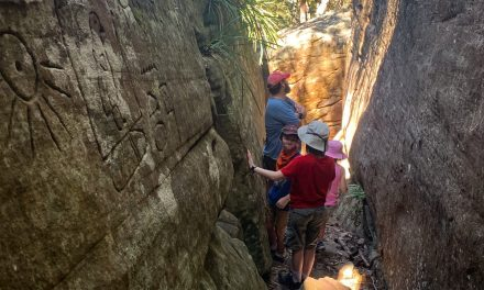 Have You Discovered the Gosford Glyphs? Here's a Bushwalk with a Mystery!