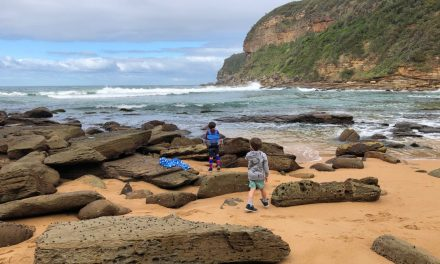 Little Beach Bushwalk – a stunning cove and easy walk for families