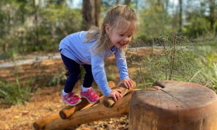 Check out the new Nature Playground at Pinyari Park, Kincumber