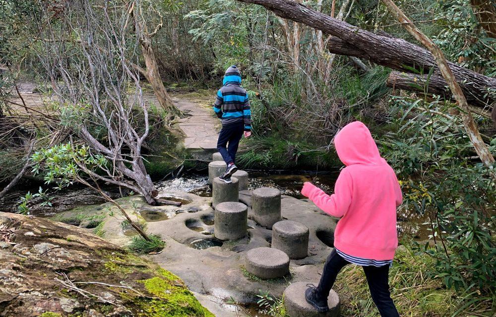Leap Across Stepping Stones and Paddle Under Waterfalls on the Girrakool Loop Bushwalk