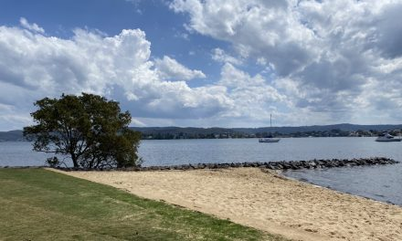 Green Point's Foreshore Reserve is the Perfect Spot for a Family Picnic and Play