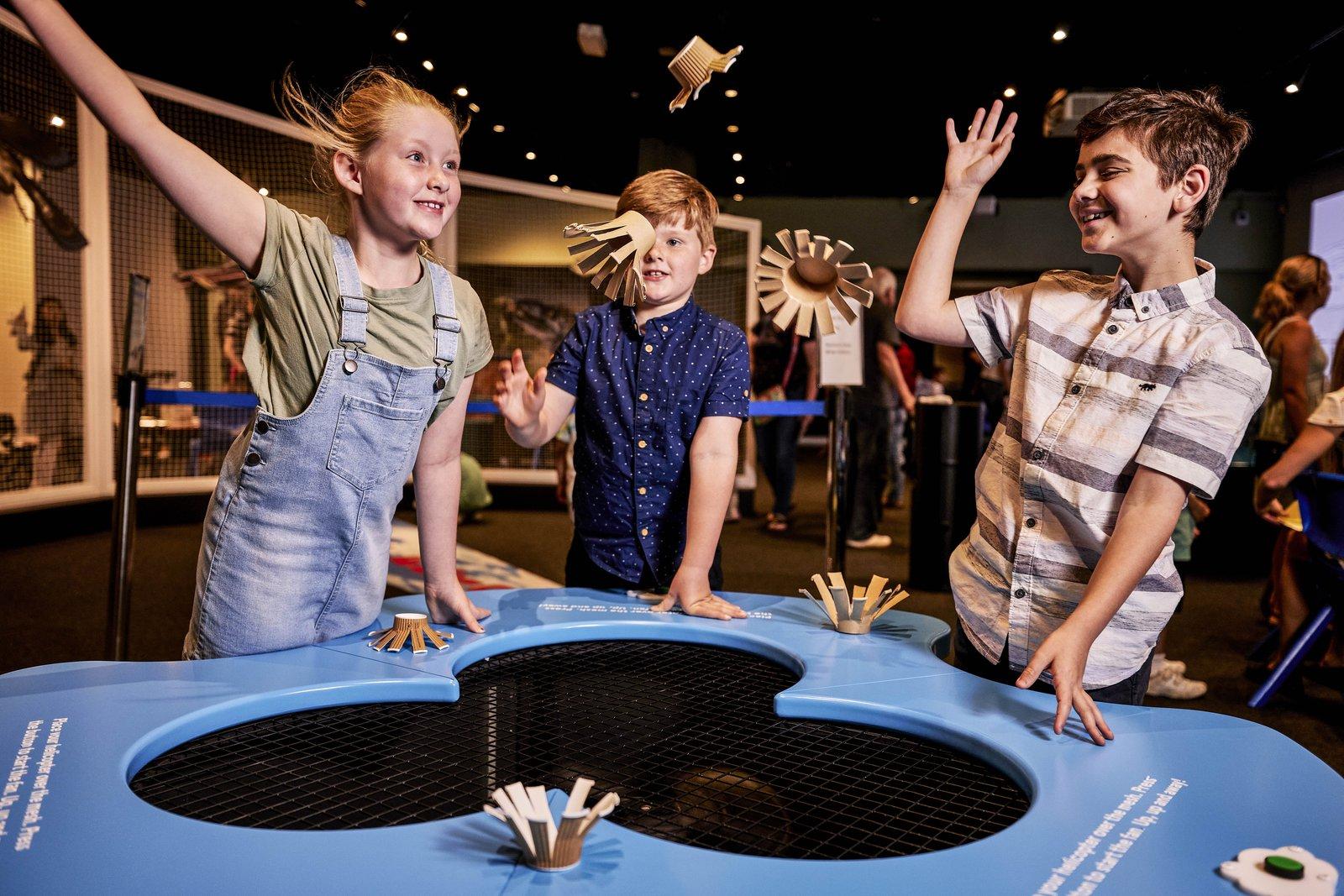 Australian Museum - Take Flight