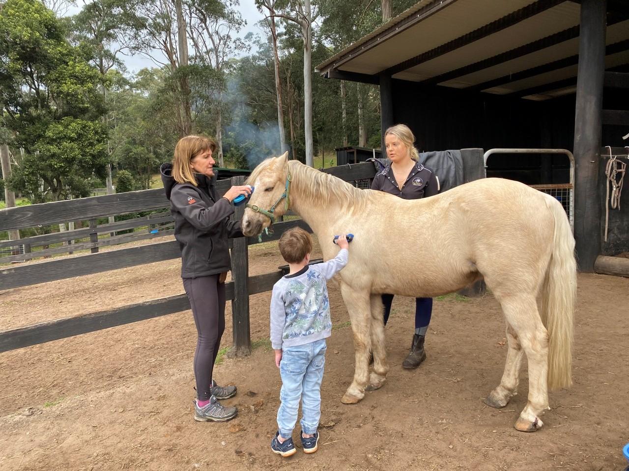 Central Coast Horse Riding School - The Outlook Riding Academy Terrigal
