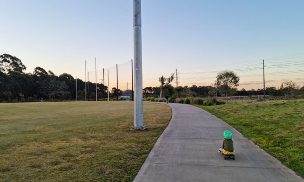 Grab the stroller and the kids' bikes and head to Tuggerah Sporting Complex for a walk around the wetlands!